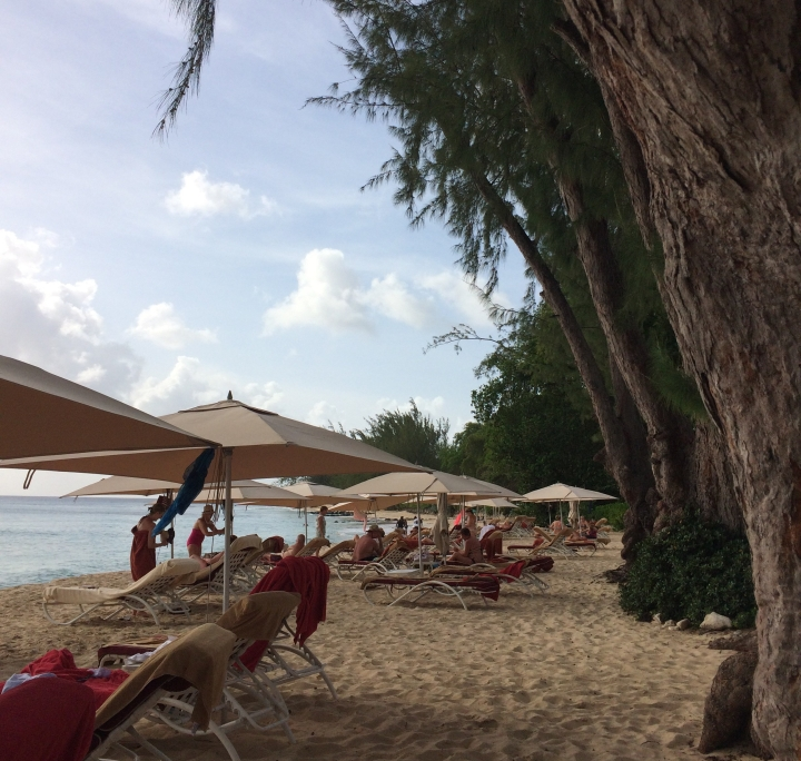 beach at colony club in barbados