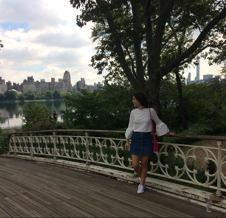 CCtakesDC bow bridge in central park