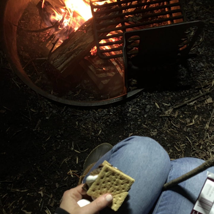 Campfire and s'mores at Sky Meadows