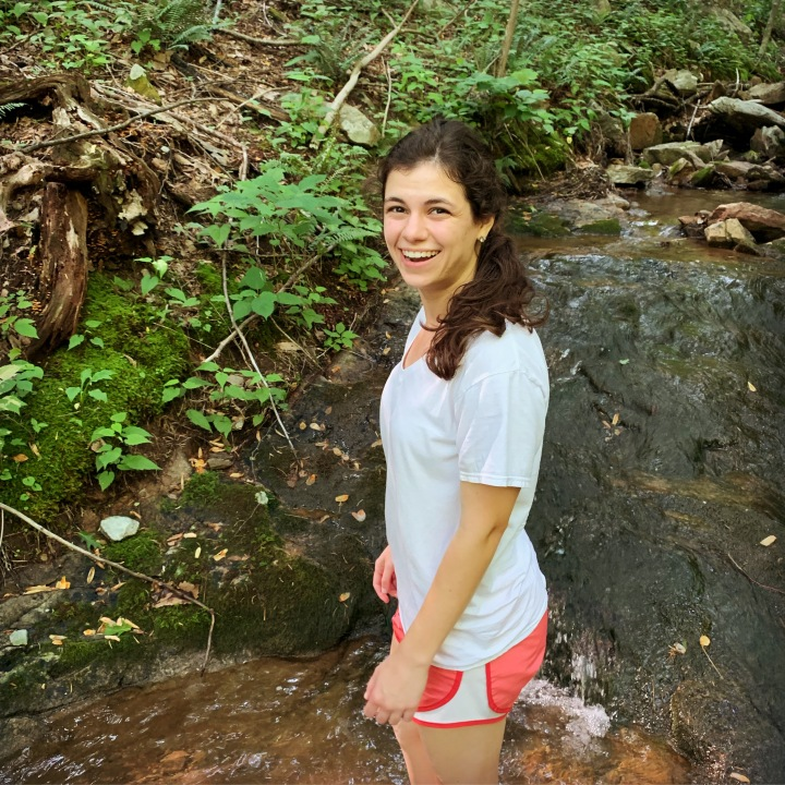 In the creek at Berry Hollow